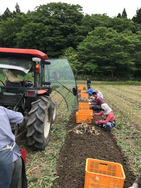 農作業の写真